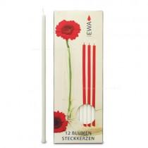 Blumensteckkerzen 12 Stück weiß 9x300mm