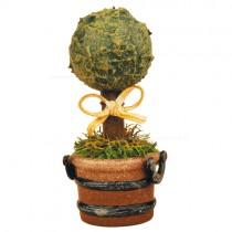 Hubrig Volkskunst - Frühling und Sommer - Minis Grünzeug - Buchsbaum - 6 cm